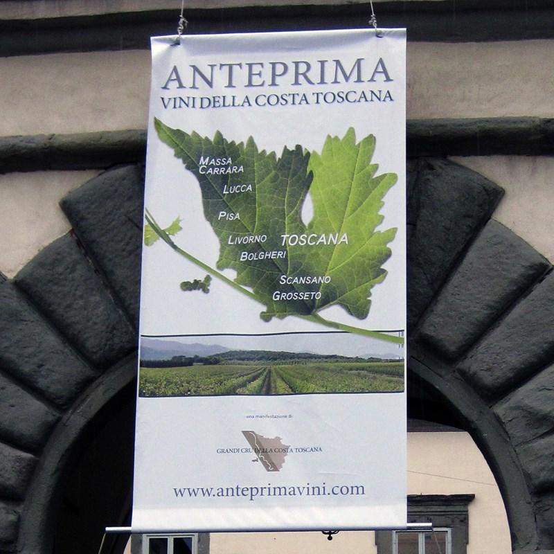 Anteprima - vini della costa toscana